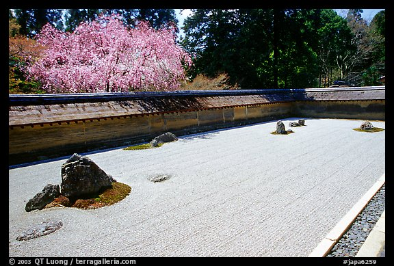 Ryoan-ji Temple has on of the most famous Zen gardens in the karesansui (dry landscape) style, a collection of 15 rocks in a sea of raked sand, enclosed by an earthen wall. Kyoto, Japan