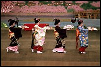 Maiko (apprentice Geisha) dress elaborately to perform the Miyako Odori (cherry blossom dance). Kyoto, Japan (color)