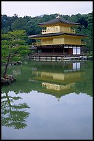 Golden pavilion, Kinkaku-ji Temple. Kyoto, Japan