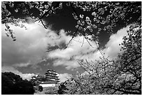 Pictures of Himeji