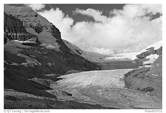 Athabasca Glacier, early morning. Jasper National Park, Canadian Rockies, Alberta, Canada (black and white)