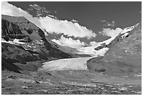 Athabasca Glacier flowing out of the Columbia Icefield, morning. Jasper National Park, Canadian Rockies, Alberta, Canada (black and white)