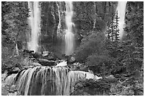 Upper tier of Tangle Falls. Jasper National Park, Canadian Rockies, Alberta, Canada ( black and white)
