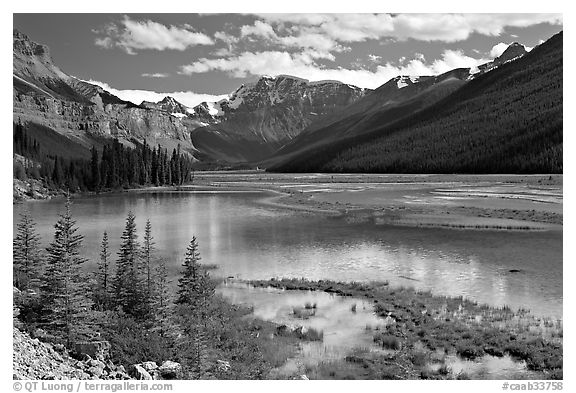 Refecting pool near Beauty Creek, afternoon. Jasper National Park, Canadian Rockies, Alberta, Canada