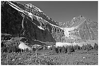 Cavell Meadows, Mt Edith Cavell, and Angel Glacier, morning. Jasper National Park, Canadian Rockies, Alberta, Canada ( black and white)