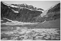 Cavell Pond at the base of Mt Edith Cavell, sunrise. Jasper National Park, Canadian Rockies, Alberta, Canada ( black and white)