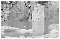 Wall of ice and Cavell Pond,. Jasper National Park, Canadian Rockies, Alberta, Canada ( black and white)