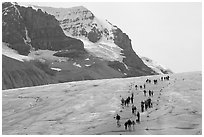 People amongst glacier and peaks, Columbia Icefield. Jasper National Park, Canadian Rockies, Alberta, Canada ( black and white)