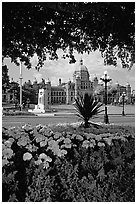 Parliament framed by leaves and flowers. Victoria, British Columbia, Canada ( black and white)