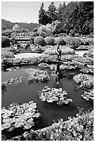 Pond in Italian Garden. Butchart Gardens, Victoria, British Columbia, Canada ( black and white)