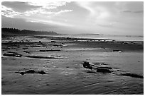 Long Beach, early morning. Pacific Rim National Park, Vancouver Island, British Columbia, Canada ( black and white)