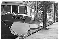 Commercial fishing boats, Uclulet. Vancouver Island, British Columbia, Canada ( black and white)