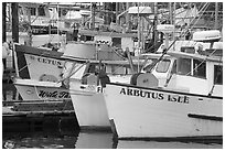 Commercial Fishing fleet, Uclulet. Vancouver Island, British Columbia, Canada ( black and white)