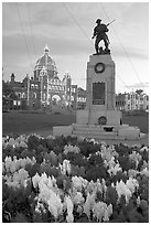 Flowers, memorial, and illuminated parliament. Victoria, British Columbia, Canada ( black and white)