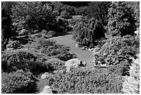 Sunken Garden in Queen Elizabeth Park. Vancouver, British Columbia, Canada ( black and white)