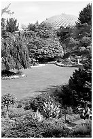 Lawn and Bloedel conservatory, Queen Elizabeth Park. Vancouver, British Columbia, Canada (black and white)