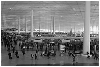 Interior of Norman Foster designed terminal 3, International Airport. Beijing, China (black and white)