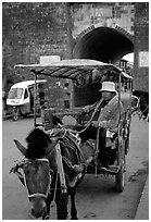 Horse carriage next to the North gate. Dali, Yunnan, China (black and white)