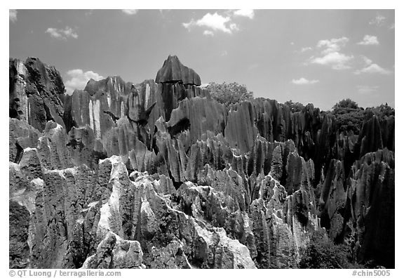 Details of the grey limestone pinnacles of the Stone Forst. Shilin, Yunnan, China (black and white)