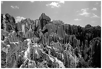 Details of the grey limestone pinnacles of the Stone Forst. Shilin, Yunnan, China ( black and white)