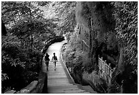 Entrance walkway to the Grand Buddha complex. Leshan, Sichuan, China ( black and white)