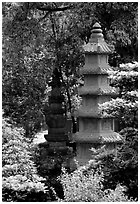 Stupa in the gardens of Wuyou Si. Leshan, Sichuan, China ( black and white)