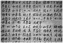 Chinese caligraphy. Lijiang, Yunnan, China (black and white)