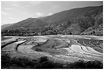 Fields on the road between Lijiang and Panzhihua.  ( black and white)