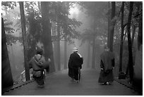 Pilgrims descend a staircase in the fog beneath Wannian Si. Emei Shan, Sichuan, China ( black and white)