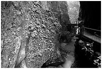 Narrow Gorge between Qingyin and Hongchunping. Emei Shan, Sichuan, China ( black and white)