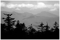 Distant mountains, seen from Jinding Si, morning. Emei Shan, Sichuan, China ( black and white)