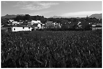 Field and village. Hongcun Village, Anhui, China ( black and white)