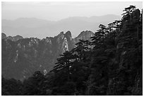 Forest and peaks. Huangshan Mountain, China ( black and white)