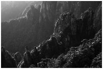 Granite spires with lush vegetation. Huangshan Mountain, China ( black and white)