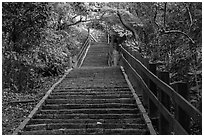 Stairs leading up Elephant Mountain. Taipei, Taiwan (black and white)