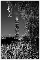 Taipei 101 seen through vegetation at night. Taipei, Taiwan (black and white)