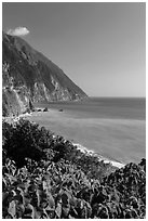 Sea cliffs and Pacific Ocean. Taroko National Park, Taiwan (black and white)