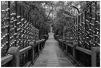 Stairs to temple lined up with blessing wind chimes. Sun Moon Lake, Taiwan (black and white)