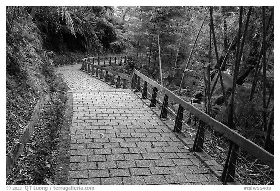 Path on Shabalan Mountain. Sun Moon Lake, Taiwan