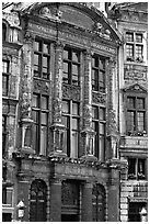 Brewers' guidhall. Brussels, Belgium (black and white)