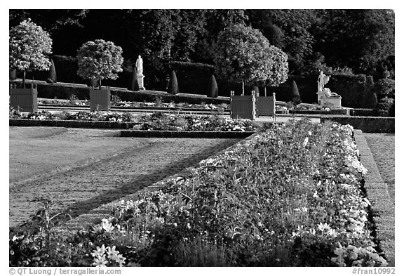 Flowers in formal gardens of the Versailles palace. France (black and white)