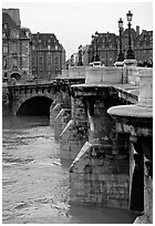 The Pont-neuf. Paris, France ( black and white)