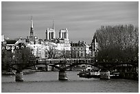 Pont des Arts and ile de la Cite, late afternoon. Paris, France (black and white)