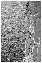 Rock climbing above water in the Calanque de Morgiou. Marseille, France (black and white)