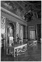 Versailles Palace room. France ( black and white)