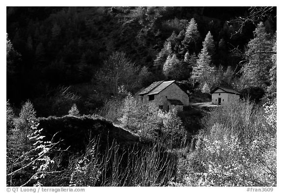 Barns in Autumn. Maritime Alps, France (black and white)