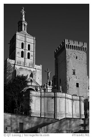 Romanesque Cathedral of Notre-Dame-des-Doms. Avignon, Provence, France (black and white)