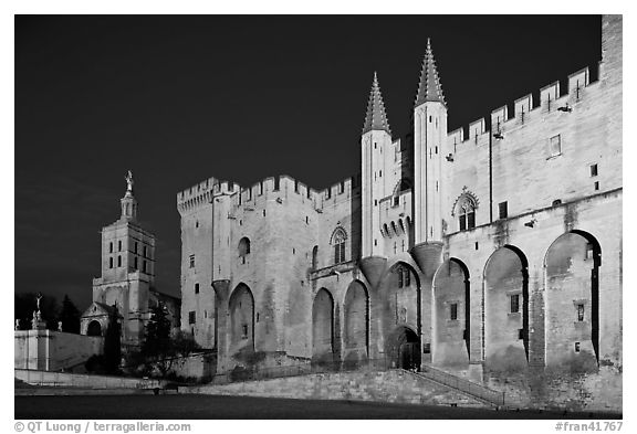 Palace of the Popes and Cathedral at night. Avignon, Provence, France (black and white)
