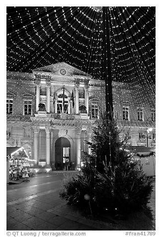 Christmas Tree and City Hall at night. Avignon, Provence, France (black and white)