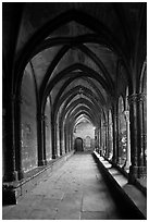 Gothic gallery, St Trophimus cloister. Arles, Provence, France ( black and white)